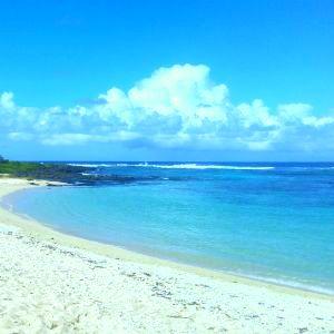 mauritius beaches link