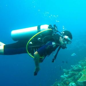 scuba diving link