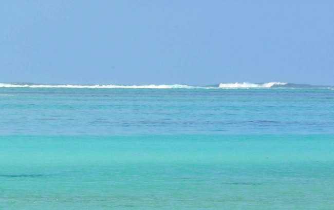 Swimming in Mauritius