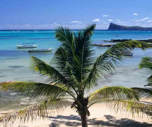 cyclones in mauritius essay