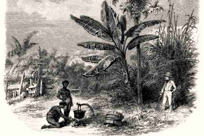 Scene of colonial plantation life with slaves