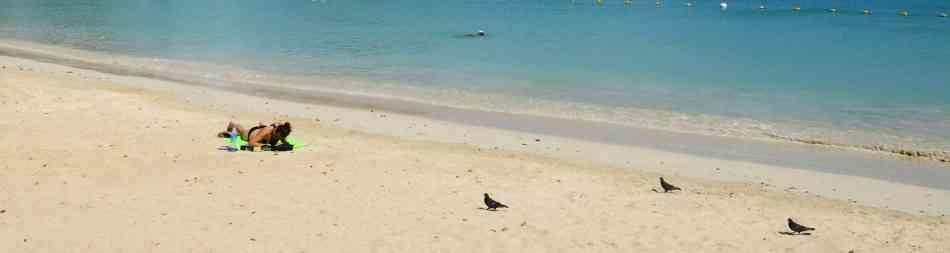 a deserted Mauritian beach